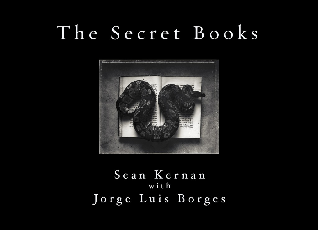 Secret Books cover